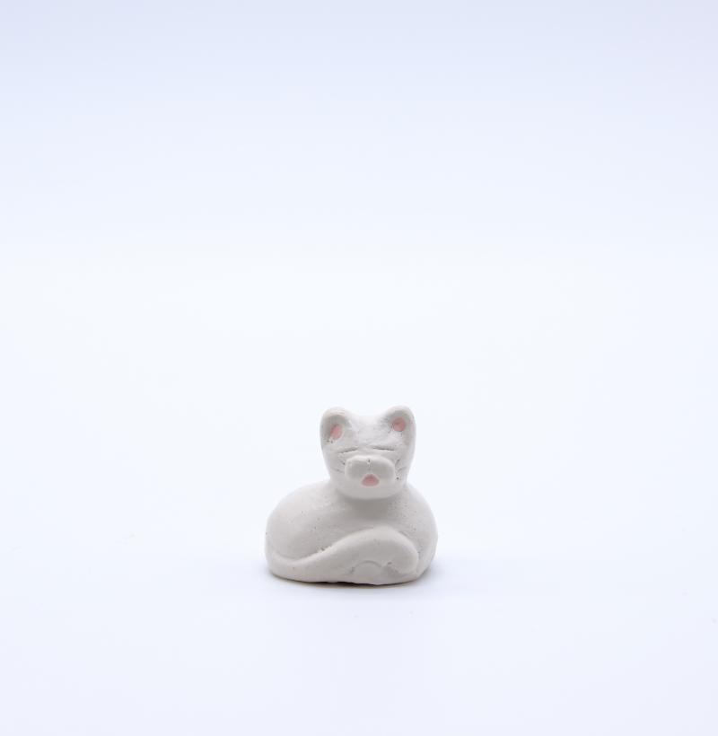 Chat blanc face produit petits animaux