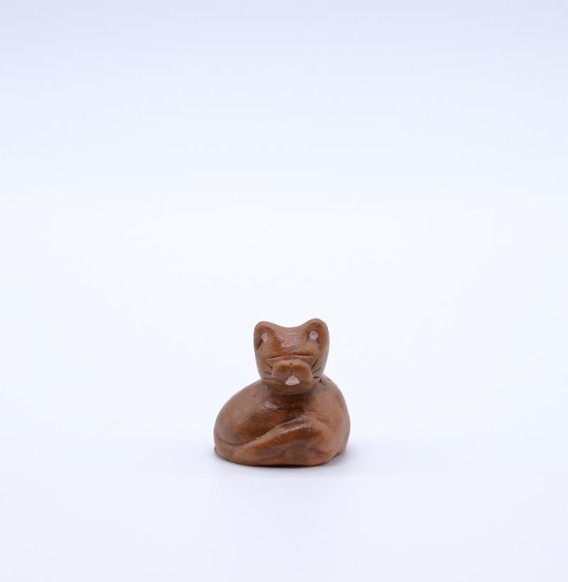 Chat roux face produit petits animaux