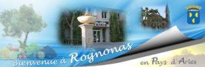 Marché de noel de Rognonas